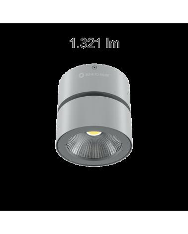Foco cilindro de pared y techo 10cm acabado gris LED 15W Aluminio basculante 90º 3000K 1255 Lm. 40º