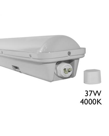 Luminaria estanca LED 37W 1200mm IP65 de superficie