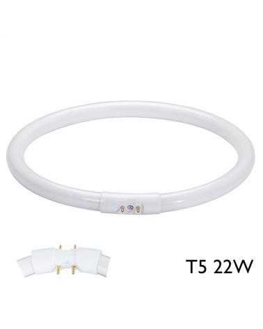 Tubo fluorescente circular T5 22W 2 GX13